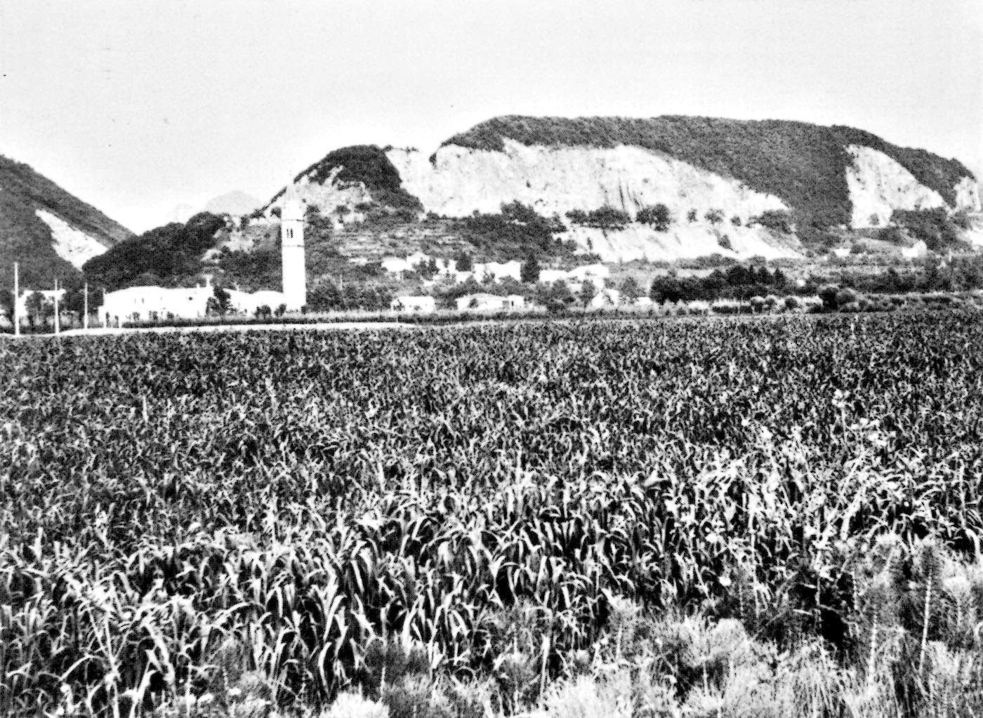 Il monte Rovarola, a Zovon di Vo' Euganeo.