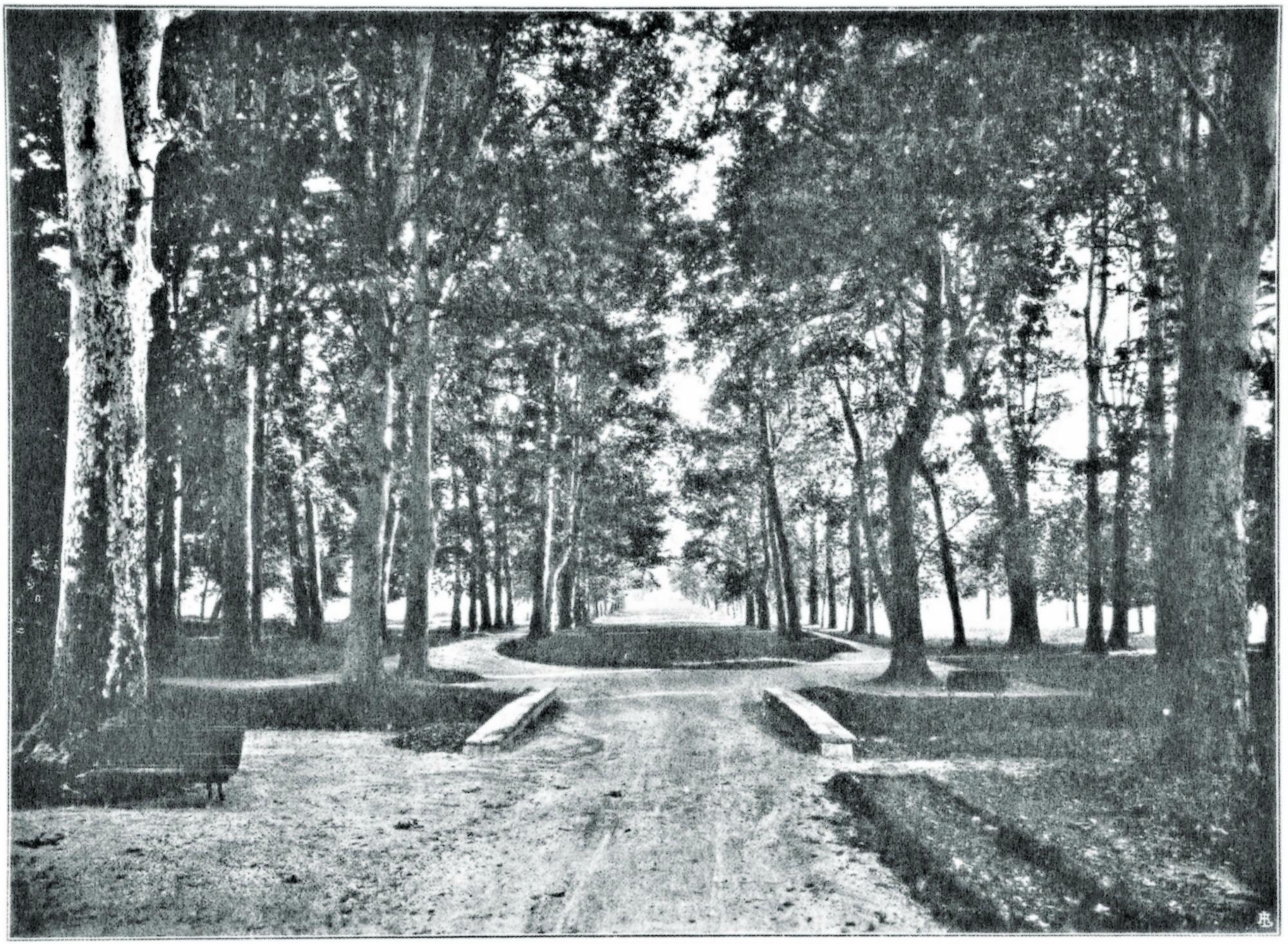 Terme di Battaglia, parco dello stabilimento.