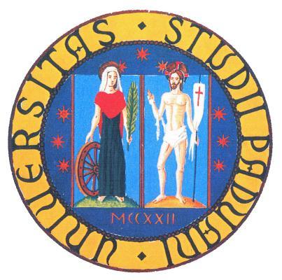Universitas Studii Paduani