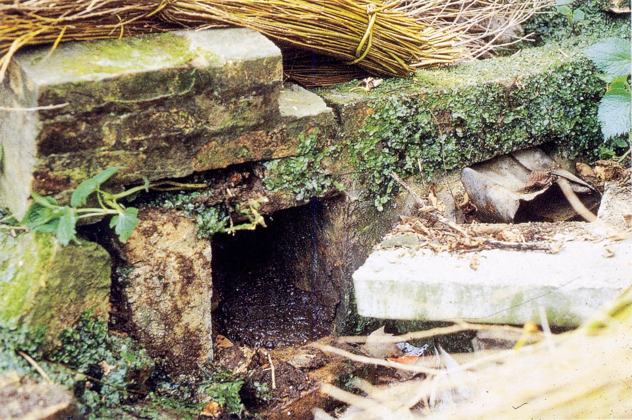 Valnogaredo, la bocca (quadretto) d'alimentazione del doccione, disattivato nel 1955.