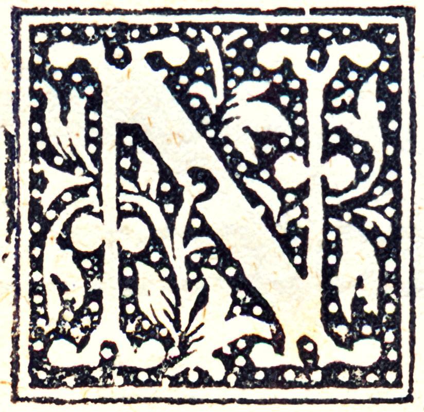 Lettera N, capolettera.